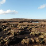 Eroded upland blanket bog, Comeragh Mountains, Co. Waterford, photo by Kate McNutt
