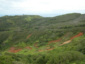 Erosion on Pitcairn Island, photo by Noeleen Smyth