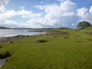 Saltmarsh at Barna, Co. Galway, photo by John Brophy